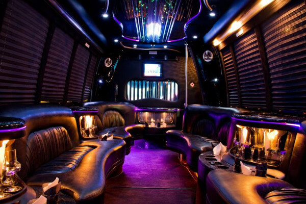15 Person Party Bus Rental Las Vegas